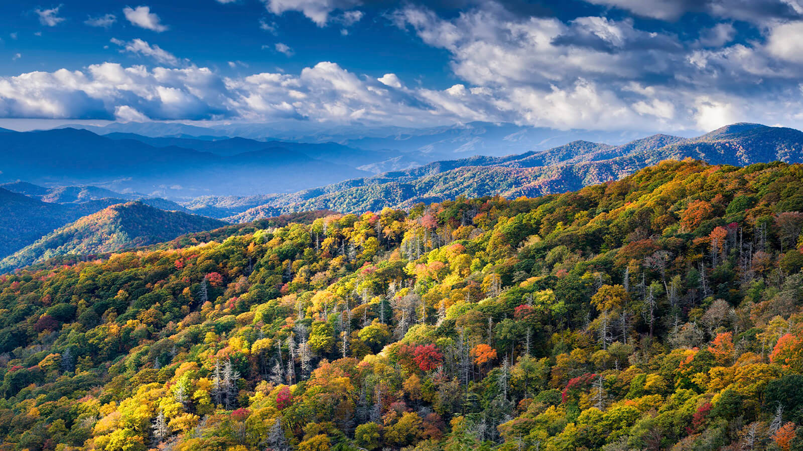 Things to do between Nashville and Gatlinburg Tennessee