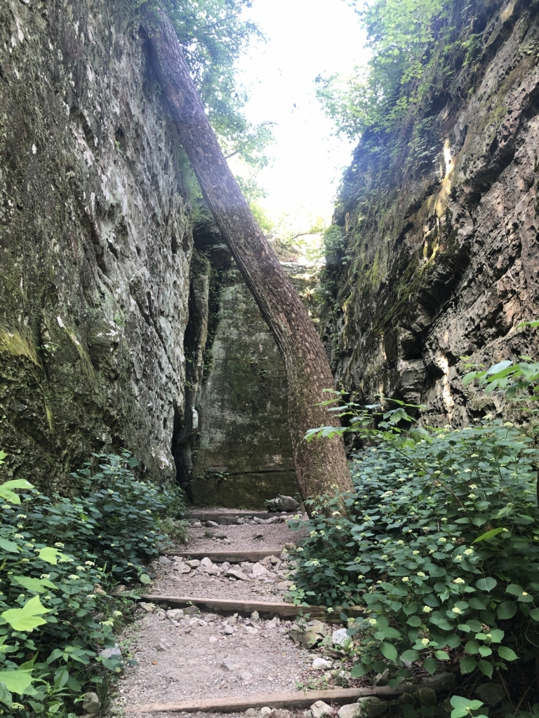 Giant City State Park Hikes