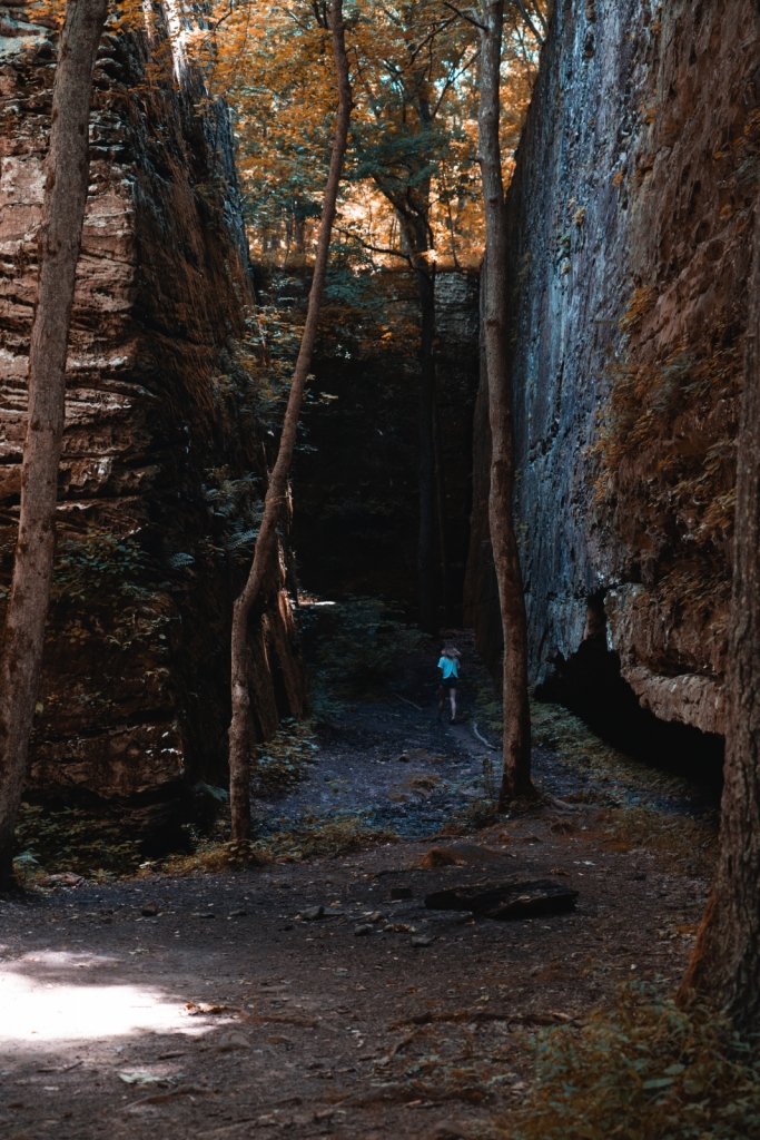 Panther Den Wilderness Area Hikes